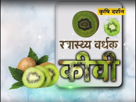 Krishi Darshan - Kiwi Fruit Farming
