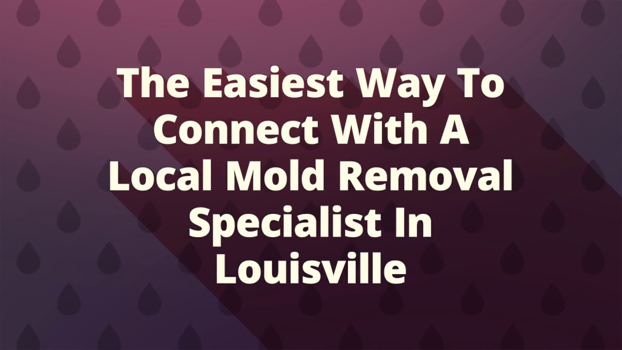 Mold Removal in Louisville KY