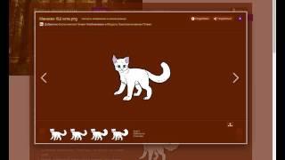 Красим модели на Коты воители Фанфики вики