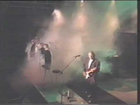 Pink Floyd: Shine On - Live - DVD (2009, Live)