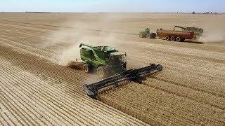 Australian Harvest 2017