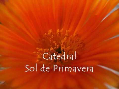 3ecac4fea SOL DE PRIMAVERA - Catedral - LETRAS.COM