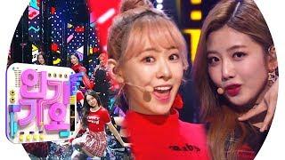 Cherry Bullet(체리블렛) - Q&A @인기가요 Inkigayo 20190303