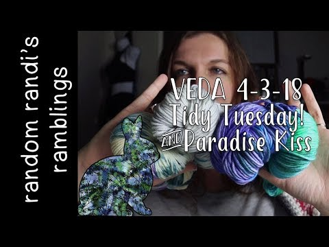 VEDA 4-3-2018 Tidy Tuesday! Clean with me! Dishes Dyed Yarn & Ramble| Cleaning Motivation Daily Vlog