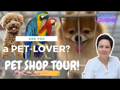 ARE YOU A PET LOVER? PET SHOP TOUR IN ABU DHABI! | Leah Aceb