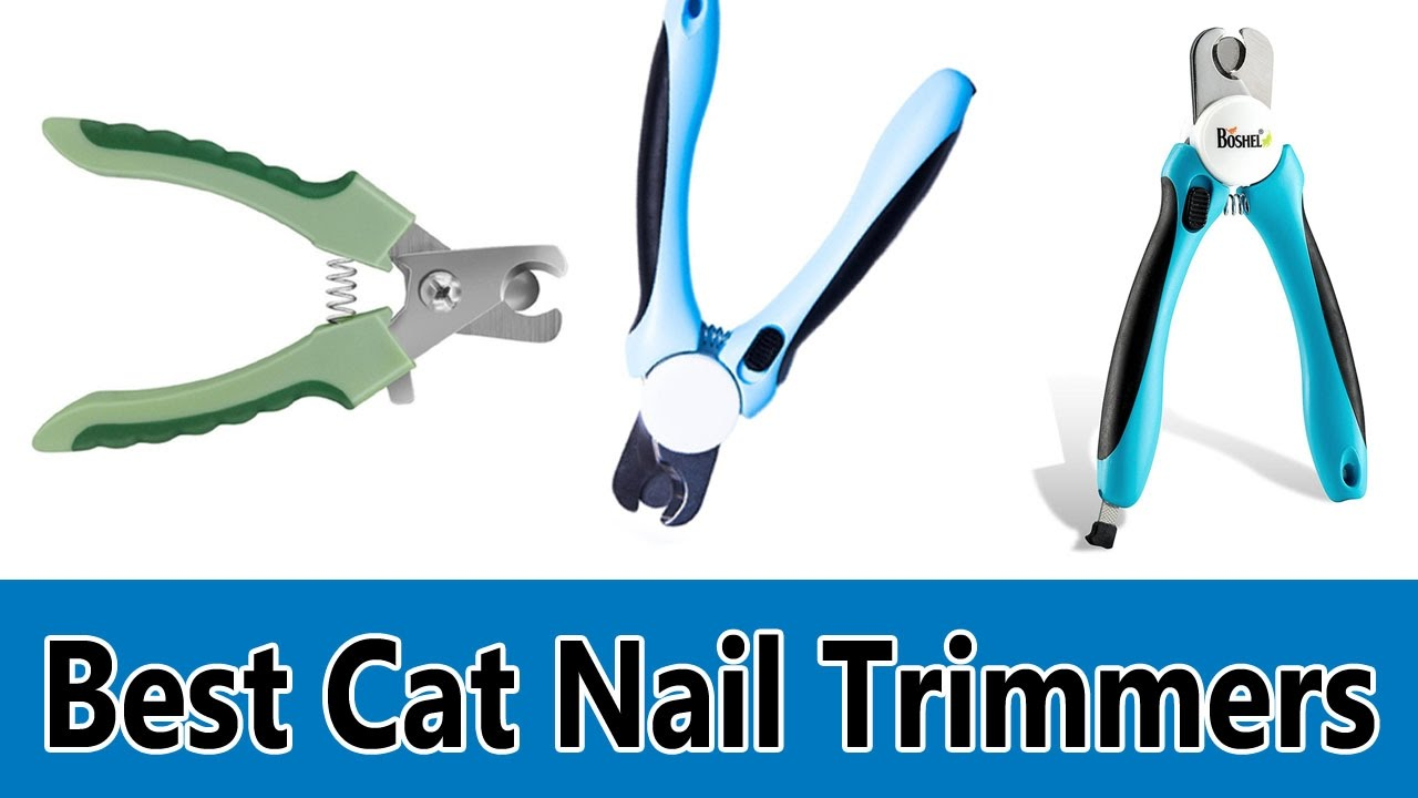 Best Cat Nail Trimmers 2017 Top 5 Best Cat Nail Trimmers Review