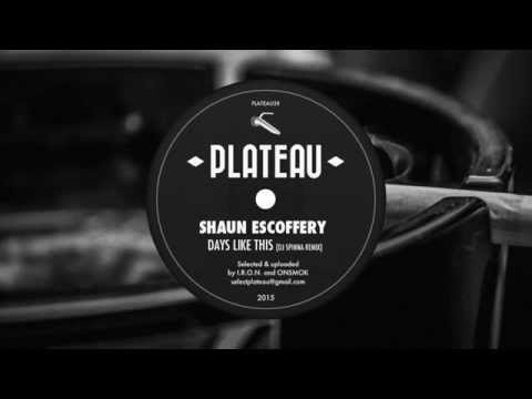 Shaun Escoffery - Days Like This (Dj Spinna Remix)