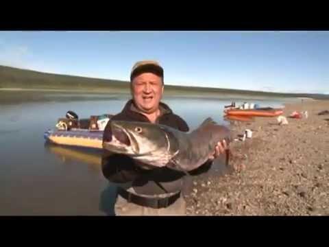 Анатолий полотно для рыбалки
