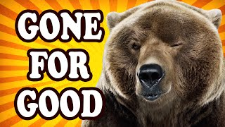 top 10 awesome animals humans let go extinct toptenznet