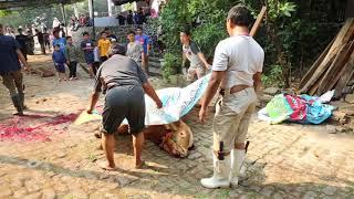 Download Video Idul Adha 2018 di Masjid Said Naum, Kebon Kacang 9, Tanah Abang, Jakpus MP3 3GP MP4