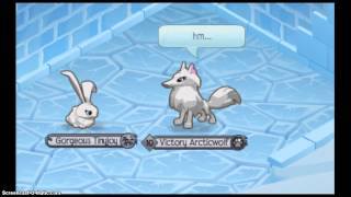 Life of an Arctic Wolf ~ Part 1 ~ The New Child ~ Animal Jam