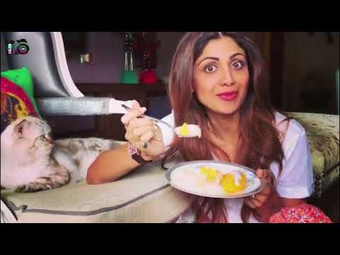 Shilpa Shetty - Sunday Binge with Simba ( who wasn't amused😂)😬😬Mango sticky rice..
