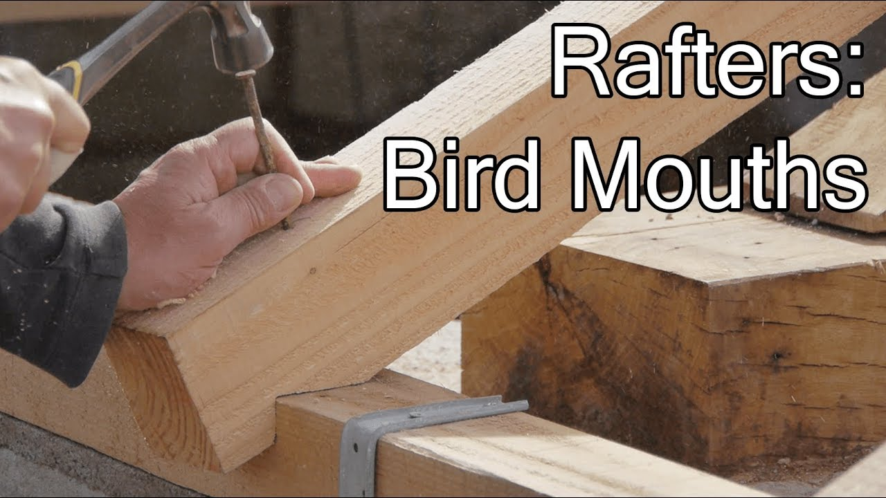 Diy Roof Rafter S Bird Mouths You