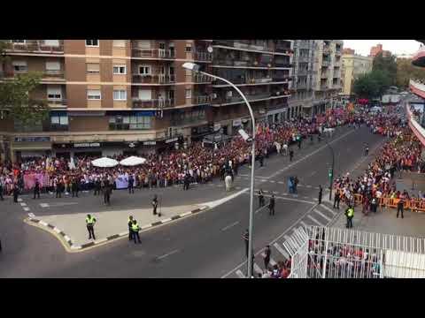 Ambientazo de gala Valencia CF - Sevilla FC