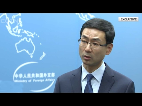 Interview with Chinese FM spokesman on Wang Yi's agenda for G20 ministerial meeting