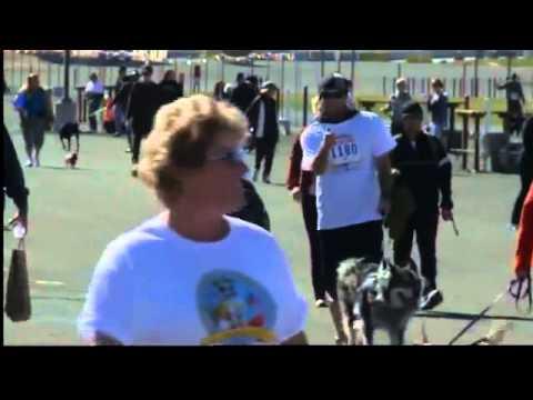 Doggie Dash & Dawdle Proves Successful