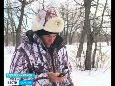 Охотоведы в Красноармейске ведут перепись диких животных
