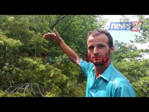 Flet i riu që filmoi gjarprin me përmasa të frikshme në Mat: Nuk është i vetmi që kam parë