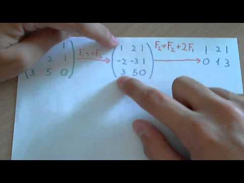 Rango de una matriz (como tener una matriz escalonada mediante transformaciones elementales)