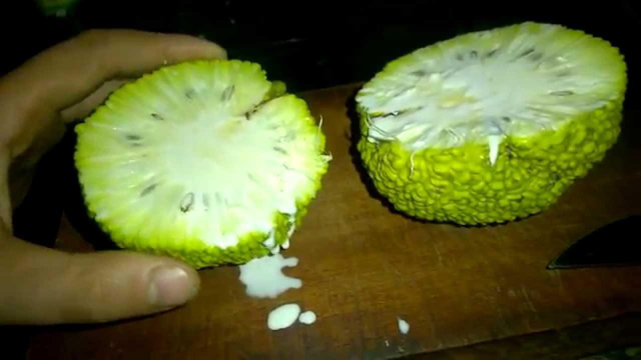 Weird Green Fruits 4