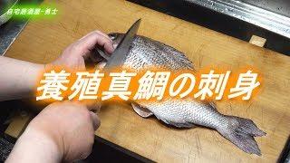 養殖真鯛のさばき方と刺身の美味しい食べ方