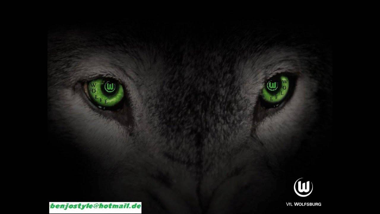 Vfl Wolfsburg Wolf