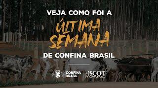 Resumo da última semana do Confina Brasil!