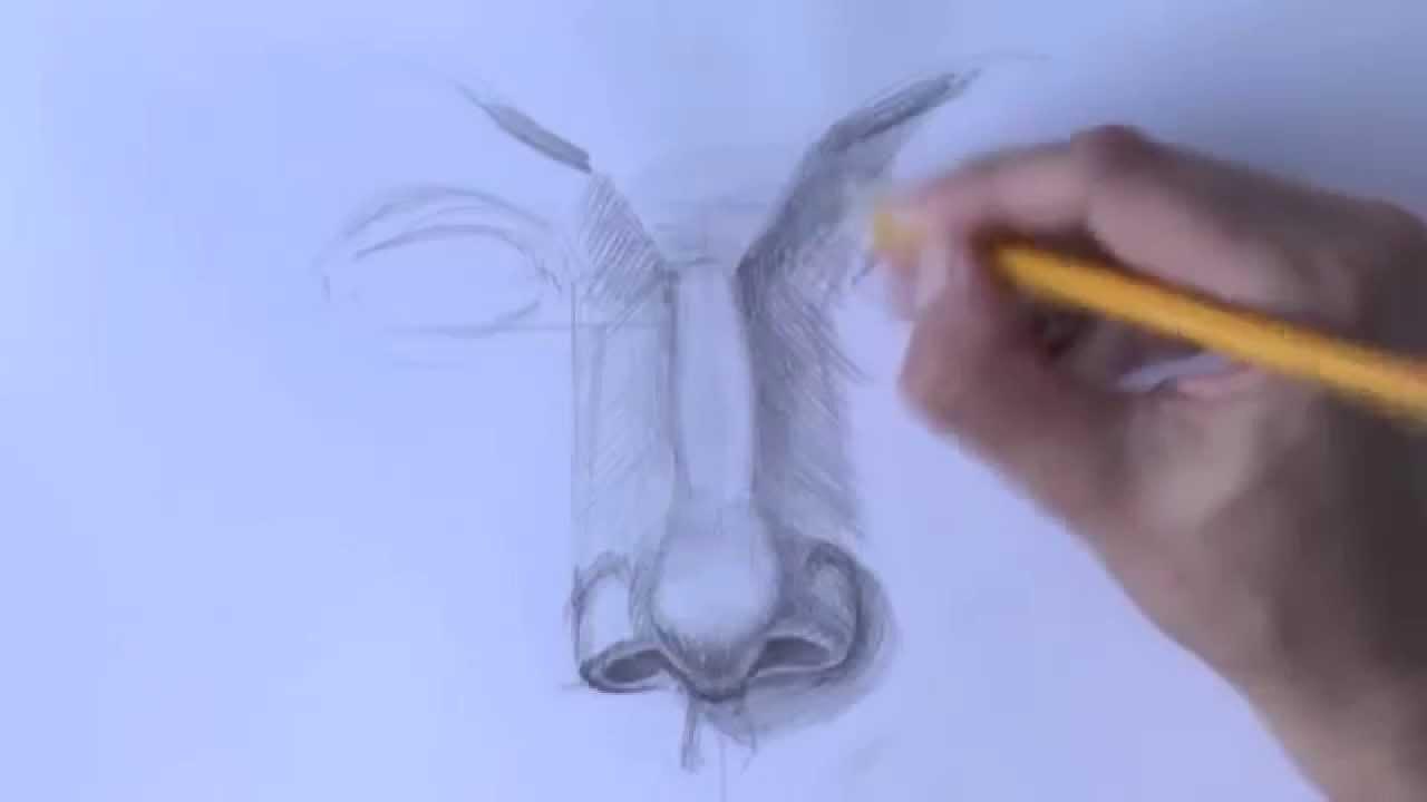 Как нарисовать нос карандашом 56