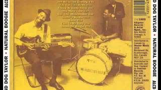 Hound Dog Taylor - Buster Boogie