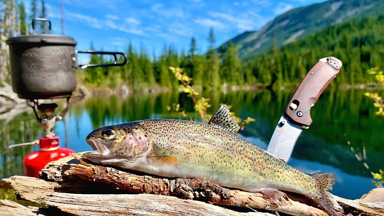 Download 48H SOLO Backpacking & MOUNTAIN TROUT Fishing! (Catch, Cook, Camp)