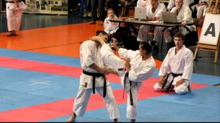 I Puchar Europy Dzieci w Karate- Lublin 2011 -  Pokazy Mistrzów