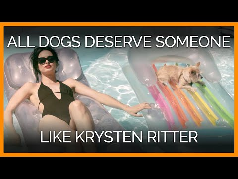 All Dogs Deserve Someone Like Krysten Ritter!