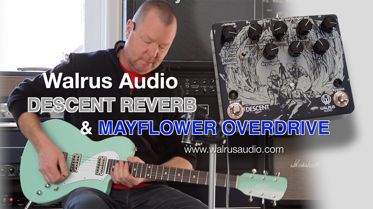 walrus audio descent reverb and mayflower od youtube. Black Bedroom Furniture Sets. Home Design Ideas