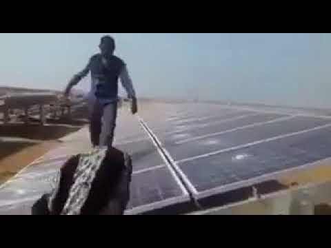A very diverse group of people caught breaking solar panels