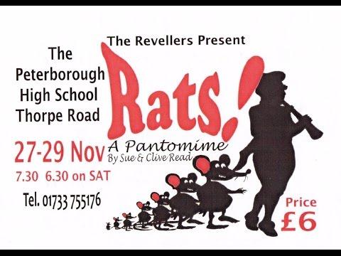 Rats (November 2008)