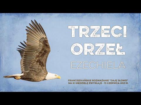 Trzeci orzeł Ezechiela: Daję Słowo - XI niedziela B - 13 VI 2021