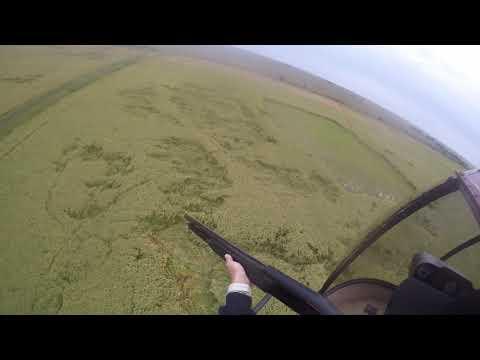Kubecka Flying Service Helicopter Hog Hunting: Jill's Hog Hunt 9/4/2020