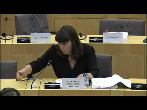 Révision de la directive énergies renouvelables; Comm.TRAN 19 06 2017