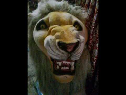 Lions are Symbols of Royalty and Symbol of Bravery and  vehicle of Durga