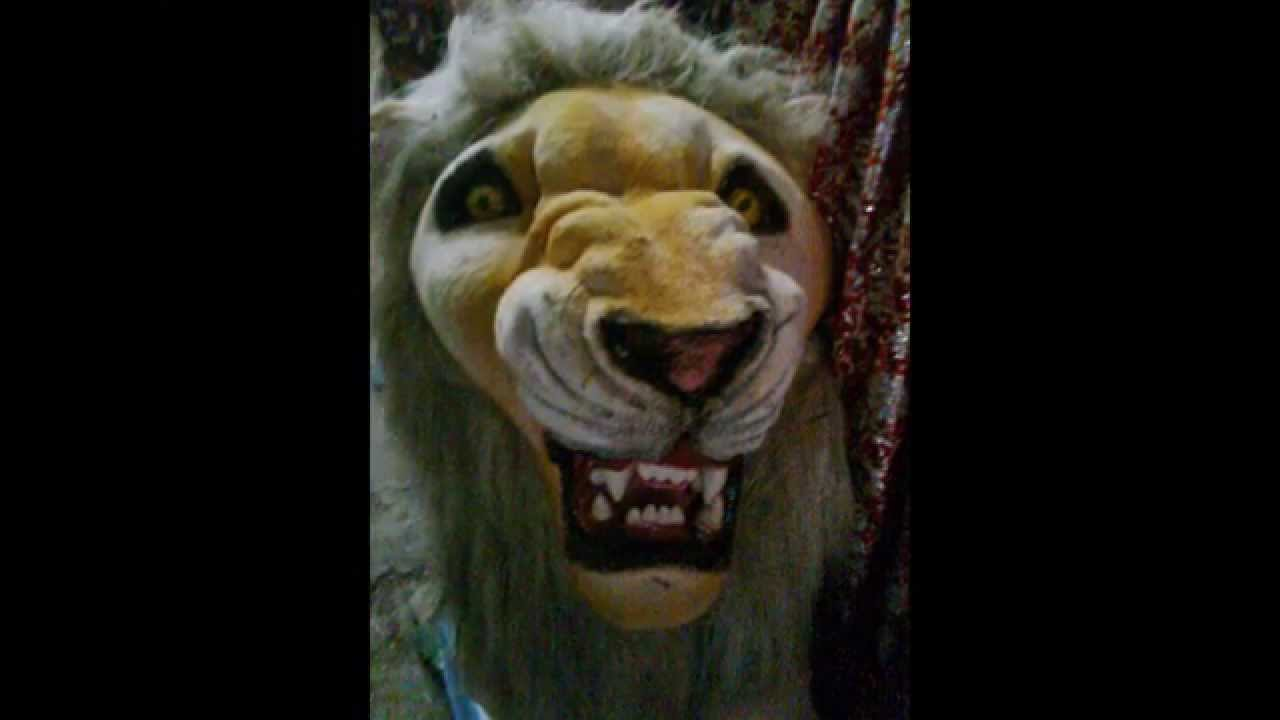 Lions Are Symbols Of Royalty And Symbol Of Bravery And Vehicle Of