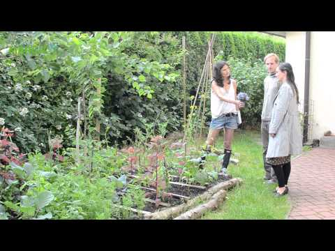 Naše jedlá permakulturní zahrada
