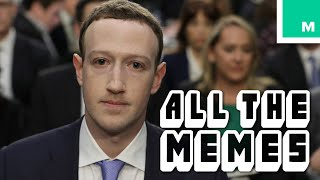Mr. Zuckerberg - All The Memes