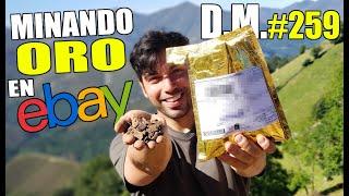 ¿¡GASTÉ MÁS DE 100€ EN TIERRA en una SUBASTA!? Minería de ORO en Ebay - Detección Metálica 259