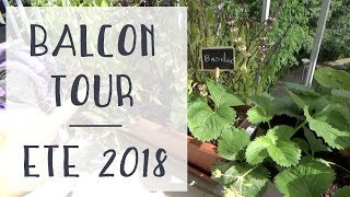 Balcon tour : je vous montre toutes mes plantes d'extérieur