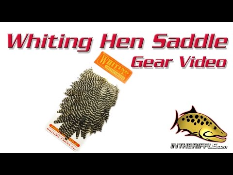 Whiting Saddle Capes Feathers Fly Tying Material