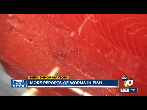 More Reports Of Worms In Salmon At San Diego-area Costco Stores