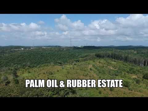 Ulu Tiram 66 Acres Land of Palm Oil & Rubber Estate