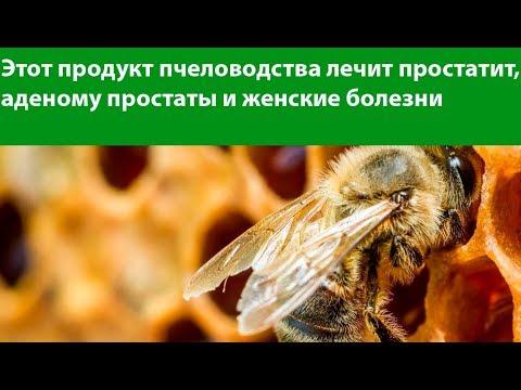 Пчелиный подмор настойка для лечения простатита, цистита и суставов. Применение. Народное средство