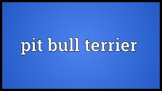 Pit Bull Terrier Meaning