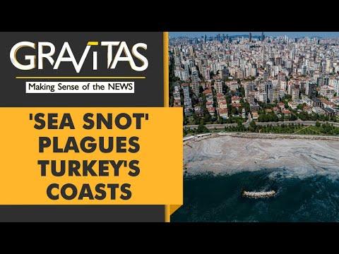Gravitas: 'Sea Snot' outbreak in Turkey